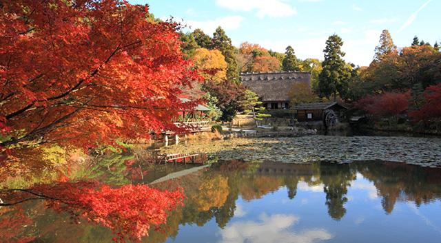 Higashiyama animals and plants park
