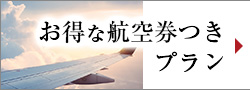 Plan with advantageous airline ticket